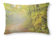 Sandwich Notch Road - Sandwich New Hampshire Usa Throw Pillow