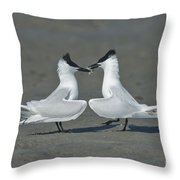 Sandwich Terns Throw Pillow