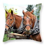 Sandy And Judy Throw Pillow