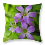 Sandy Creek Wildflowers Throw Pillow