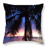 Sandy Ground Soother Throw Pillow