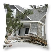 Sandys Furry Throw Pillow