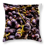 Sangiovese Grapes Throw Pillow