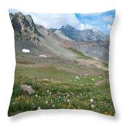 Sangre De Cristos Meadow And Mountains Throw Pillow