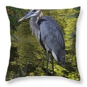 Sanibel Great Blue Heron Throw Pillow