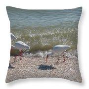 Sanibel Ibis Throw Pillow