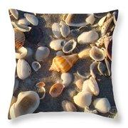 Sanibel Island Shells 2 Throw Pillow
