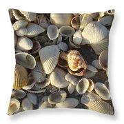 Sanibel Island Shells 3 Throw Pillow