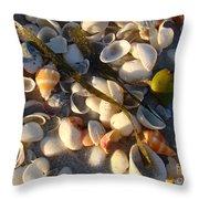 Sanibel Island Shells 4 Throw Pillow