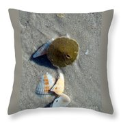 Sanibel Sand Dollar 1 Throw Pillow