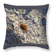 Sanibel Sea Oat Throw Pillow