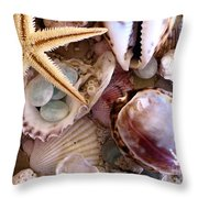 Sanibel Shells Throw Pillow