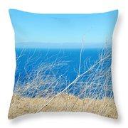 Santa Cruz Island Sea Of Grass Throw Pillow