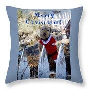 Santa Dog-2 Throw Pillow