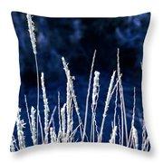 Santa Fe Grass 1 Throw Pillow