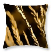 Santa Fe Grass 2 Throw Pillow