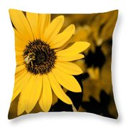 Santa Fe Sunflower 1 Throw Pillow