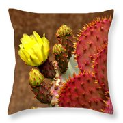Santa Rita Cactus Throw Pillow