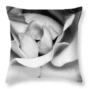 Sapphire Rose Bw Palm Springs Throw Pillow