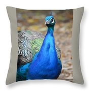 Sapphire Smiling Throw Pillow
