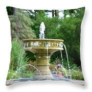 Sarah Lee Baker Perennial Garden 6 Throw Pillow