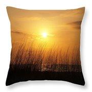 Sarasota Sunset's Throw Pillow by Athala Carole Bruckner