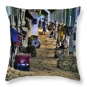 Saratoga Throw Pillow