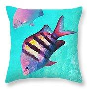 Sargeant Fish Throw Pillow