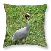 Sarus Crane Throw Pillow