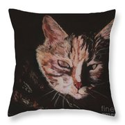 Sasha Throw Pillow