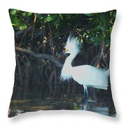 Sassy Snowy Egret Throw Pillow