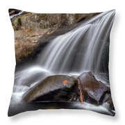 Sassy Waters Throw Pillow