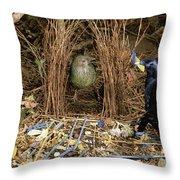 Satin Bowerbird Pair At Bower Throw Pillow