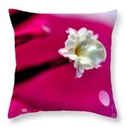 Satin Droplet On Bougainvillea Stamen Throw Pillow