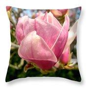 Saucer Magnolia Bloom Throw Pillow