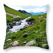 Savage River From Savage River Trail In Denali Np-ak    Throw Pillow