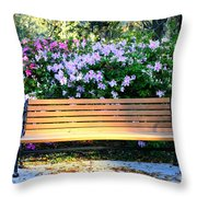 Savannah Bench Throw Pillow by Carol Groenen