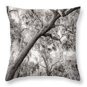 Savannah Drive Throw Pillow