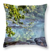 Savannah River In Spring Throw Pillow
