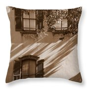Savannah Sepia - Windows Throw Pillow