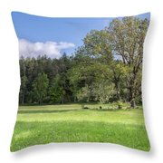 Save My Tree Throw Pillow