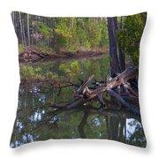 Save The Marsh Throw Pillow