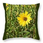 Save The World Little Bee Throw Pillow