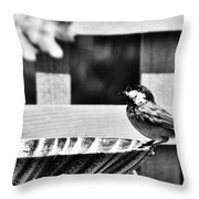Savoring The Moment Throw Pillow