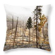 Sawback Burn, On Bow Valley Parkway Throw Pillow
