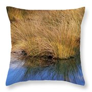 Sawgrass Throw Pillow