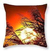 Sawgrass Sunset  Throw Pillow