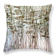 Sawgrass Swamp Panorama Throw Pillow