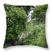 Sawpit Creek Throw Pillow
