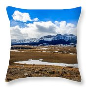 Sawtooth Ridge Throw Pillow